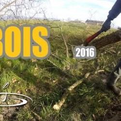 Bois, entretien des abords de champs – 2016
