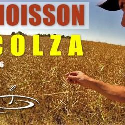 VIDÉO : Moisson du colza – 2016