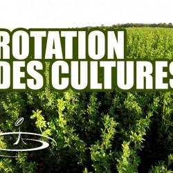 VIDÉO : Rotation des cultures, améliorer la fertilité du sol – 2016