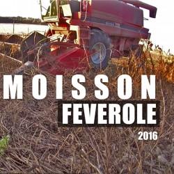 MOISSON FEVEROLE 2016