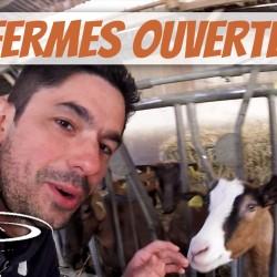 VIDÉO : Visite de fermes d'élevage, chèvres et cochons – 2017