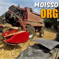 MOISSON RECOLTE ORGE 06 2017