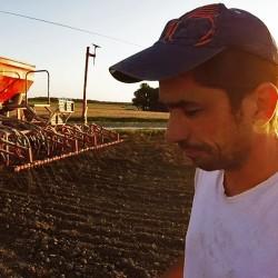 Semis de la culture principale, le blé – 2017