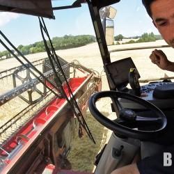 La moisson des blés – 2018